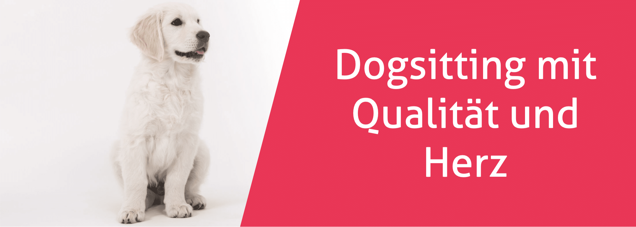 Dogsitting mit Qualität und Herz