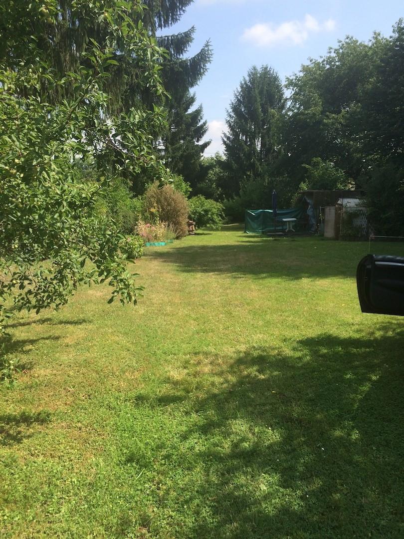 Bild vom neuen Garten