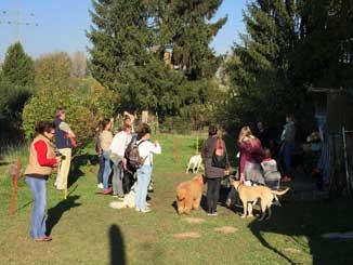 Herbstfest in unserem neuen Hundekindergarten