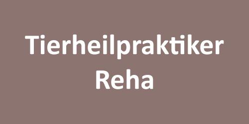 Hundepsychotherapie Tierheilpraktiker Reha