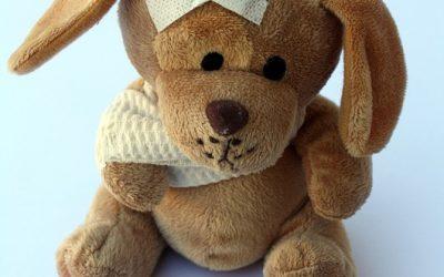 Hunde-Eltern Kurs – Infektionskrankheiten und Zoonosen